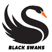 black swans. How to Prevent Disasters at Events
